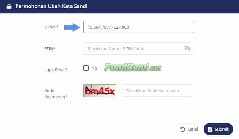 Lupa Password DJP Online