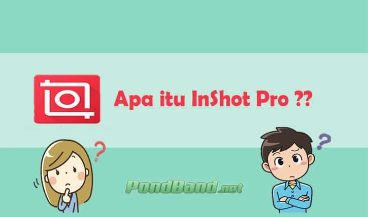Apa itu InShot Pro