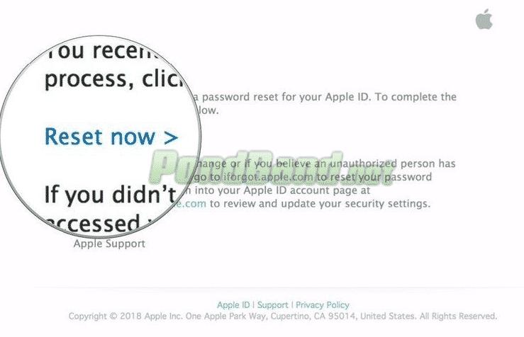 """Apabila email sudah Anda buka, selanjutnya klik tulisan """"reset now"""" agar Anda bisa mereset Icloud yang lupa kata sandi"""