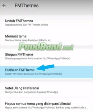 Whatsapp Mod iOS Apk