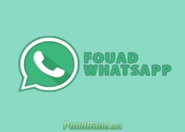 Whatsapp MOD Fouad