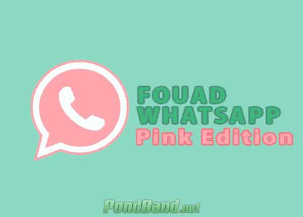 Whatsapp Mod Pink Edition