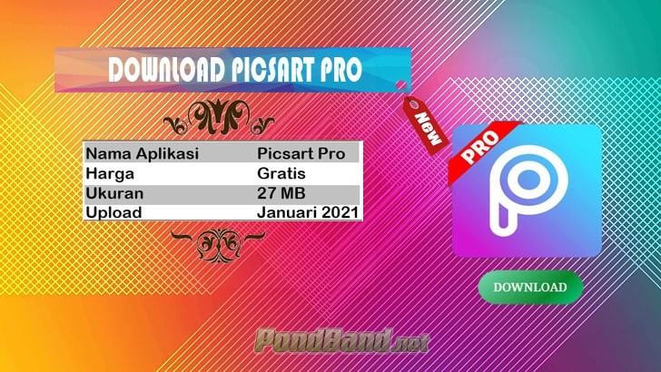 Downlaod picart pro