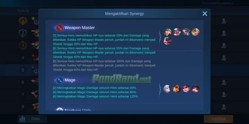 weapon master -mage