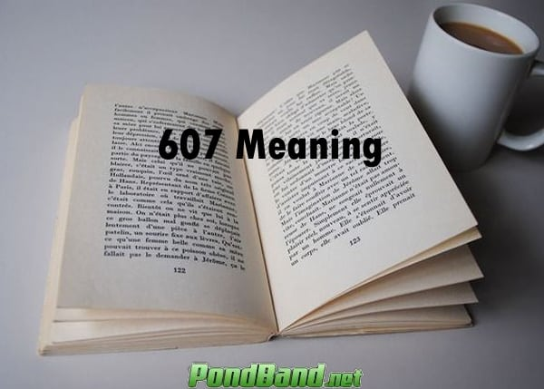 607 meaning1.jpg