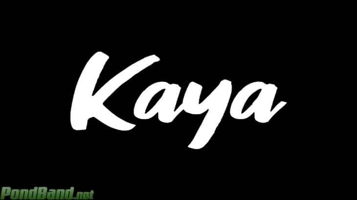 Download Aplikas Kaya Apk