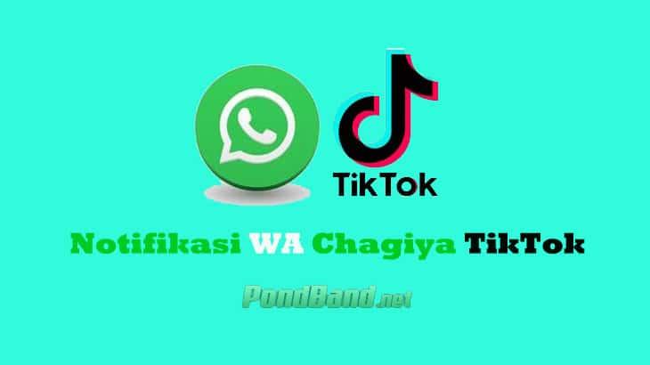 Sekilas Info Notifikasi WA Chagiya TikTok